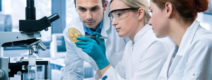 3 docteurs qui regardent une molécule sur un microscope