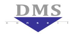 logo de l'entreprise DMS