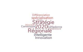 S3-Stratégies de Spécialisation Intelligentes